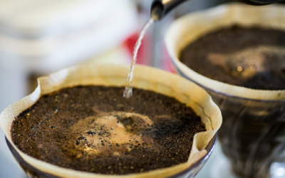 Influences on the End Flavor of Coffee